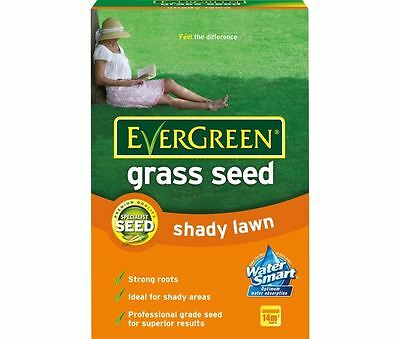 EverGreen Shady Lawn Grass Seed 420g Carton Covers 14m/2