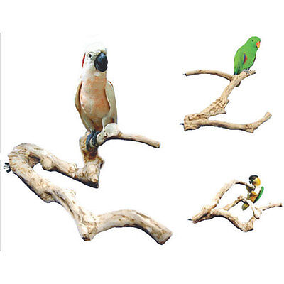 Parrot Perch Pet Bird Perch Natural Wood Multi Branch for Larger to Extra Large
