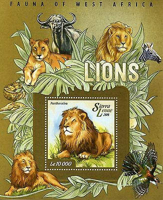 Sierra Leone 2015 MNH Lions Fauna of West Africa 1v S/S I Wild Animals Stamps