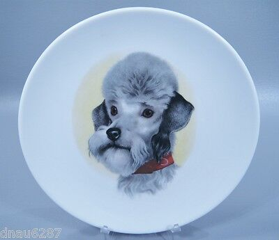 Vintage Dandie Dinmont Terrier Decorative Plate from Bavaria