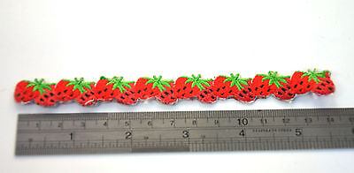 STRAWBERRY HEM EDGING EDGE Embroidered Sew Iron On Cloth Patch Badge APPLIQUE