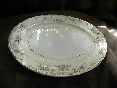 "Rare Vintage Hard-to-Find Steubenville 1085 Large Oval Tray -15-3/8"" Long"