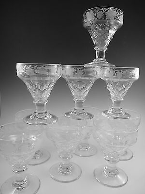 ANTIQUE WINE Glass / Glasses - Fruiting Vine Pattern Rummers - Set of 10