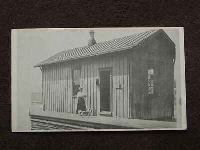Woman & Her Dog Standing At A Train Station Vtg Photo Postcard