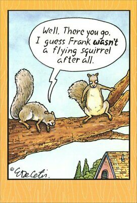 Flying Squirrel - Eric Decetis Funny Birthday Card - Greeting Card by Pictura