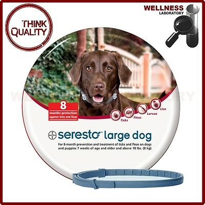 Bayer Seresto Flea & Tick 8 Months Collar for Large Dogs above 18lbs (8kg)