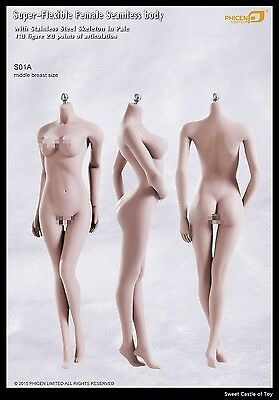 1/6 Phicen Super-Flexible Steel Skeleton Seamless Pale Middle Bust S01A Body