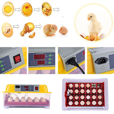 New Digital 24 Egg Incubator Automatic Turning Hatcher Clear Temperature Control
