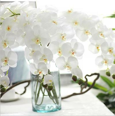 Artificial Fake Silk Flower White Orchid Phalaenopsis 96cm Home Decor