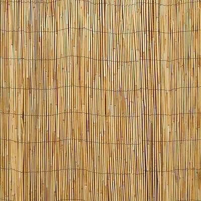 REED SCREENING ROLL Outdoor Garden Fence Panel Privacy Screen 5m Long 1m High