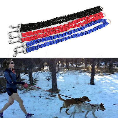 2 Way Double Dog Leads Elastic Bungee Coupler Dog Leash Splitter for Twin Dogs