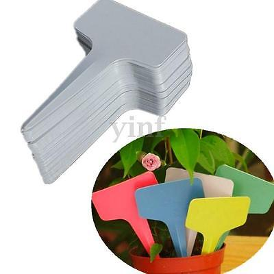 100pcs 6 x10cm Plastic Plant T-type Tags Markers Nursery Garden Seed Labels New