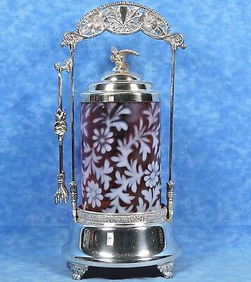 Cranberry Glass Spanish Lace DAISY & FERN Pickle Castor- Silverplated Stand- EC