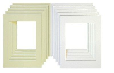 Picture Frame Mounts Bevel Cut Photo Frame Mounts Various Sizes And Packs
