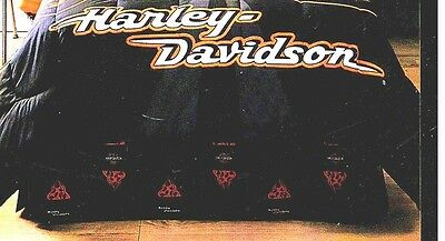 Harley Davidson Flames Bed Skirt-Twin Size
