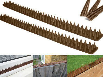 Fence Wall Spikes Anti Climb Guard Security Spike Cat Bird Repellent Deterrent