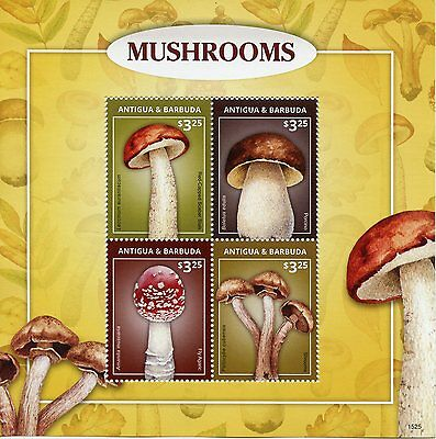 Antigua & Barbuda 2015 MNH Mushrooms 4v M/S Fly Agaric Porcino Shrooms Stamps