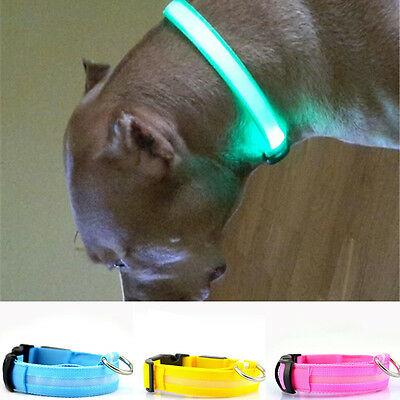 Flashing 2016 Glow Adjustable Small Pet Led Dog Collar Supplies Products Blue