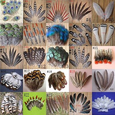 Wholesale 25 different styles of pheasant feather selection free shipping