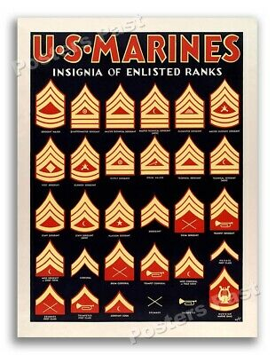 1940s Insignia of Enlisted Ranks WWII Marine Corps War Poster - 20x28