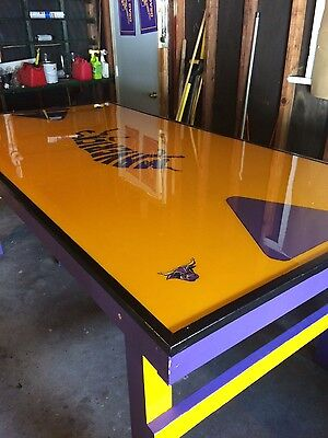 MSU Maverick Beer Pong Table