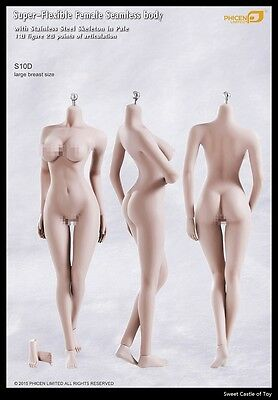 1/6 Phicen Flexible Steel Skeleton Seamless Pale Large Bust S10D Body TBLeague