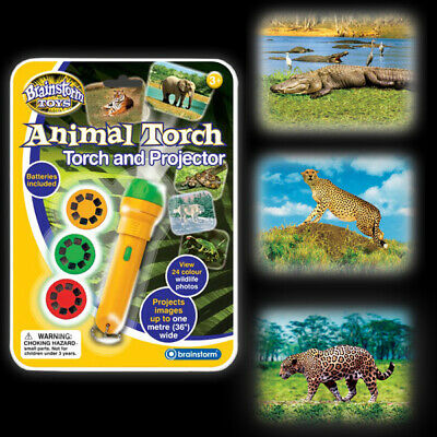 Animal Torch & Projector - Wildlife Zoo Kids Children