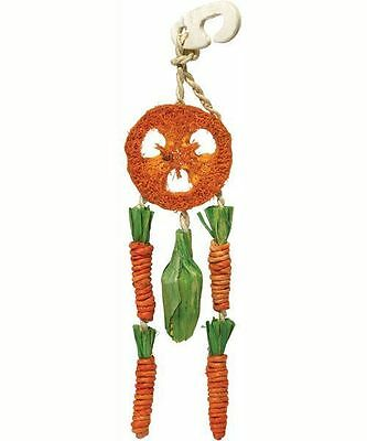 Rosewood Loofah Carrot Dreamcatcher Hanging Chew Toy for Rabbits Guinea Pigs