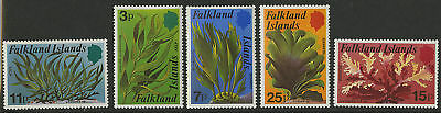 Falkland Islands  1979   Scott #282-286  Mint Never Hinged Set
