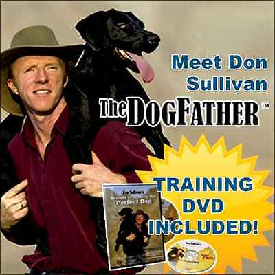 Don Sullivan Perfect Dog Command Collar Puppy Obedience Training + DVD Small