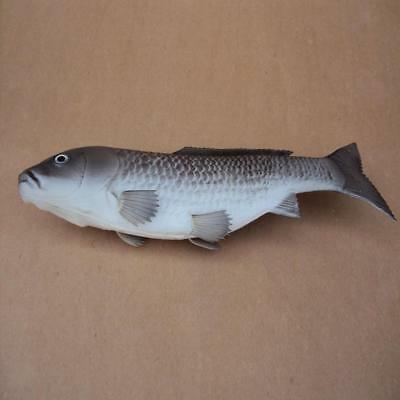 Realistic Fake Grey Freshwater Carp Food Pretend Play Bakery Staging Props