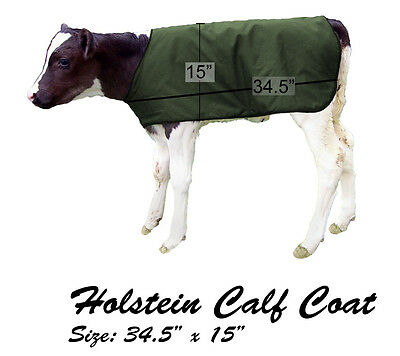 BetterMilk Large Green Holstein Insulated Calf Blanket Coat Buy 3 Get 1 Free