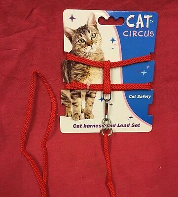 Cat Kitten Harness And Lead Set RED Strong Nylon 53 Inch Lead toy dog