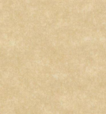 Parchment Paper Text 24lb, Size 8.5 X 11 Inches, 50 Sheets Per Pack (Aged)