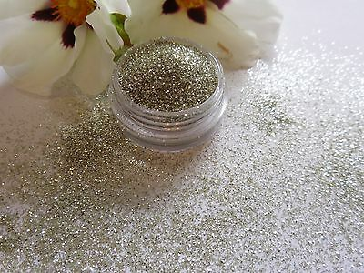 "Nail Art Party ""Silver"" Sparkle Glitter Powder Dust Mix Pot Tips Nail Decoration"