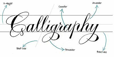 Calligraphy & Lettering 164 Vintage Books Sign Making Writing Guides on DVD CD