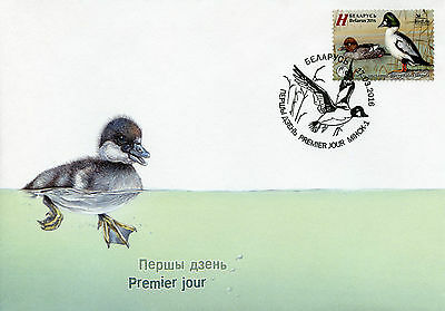 Belarus 2016 FDC Goldeneye Ducks Birdlife 1v Set Cover Duck Birds Stamps