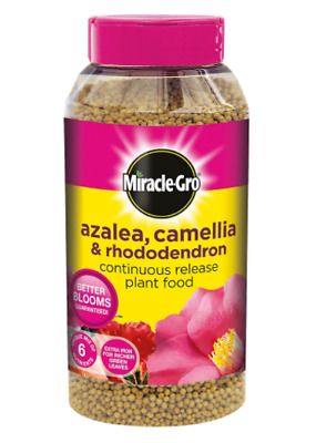 Miracle-Gro Slow Release Azalea Camellia and Rhododendron Plant Food Shaker 1kg