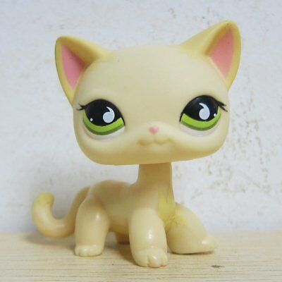 Littlest Pet Shop Animals LPS Yellow & Cream Short Hair Kitty Cat # 733 Rare