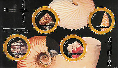 St Kitts 2012 MNH Shells 4v M/S Marine Seashells Turbo Petholatus Murex Stamps