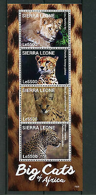 Sierra Leone 2015 MNH Big Cats of Africa 4v M/S I Wild Animals Lions Stamps