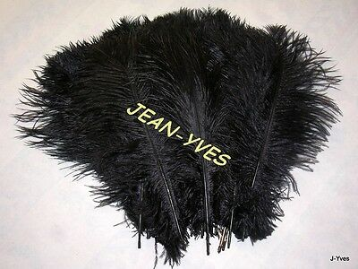"10 Black Ostrich Feathers 14-16""l"