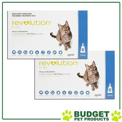 Revolution For Cats 2.6-7.5kg Blue 12 Pack