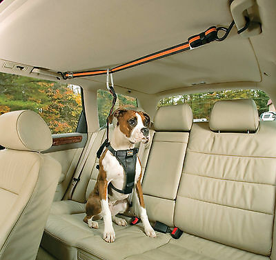 KURGO LEASH AND ZIP LINE COMBO FOR DOGS (IN CAR) travel vehicle safety teather