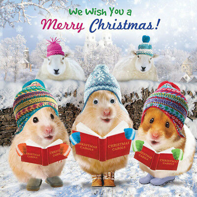 Hamster Carroll Singers Christmas Card 3D Goggly Moving Eyes, Funny Xmas Card