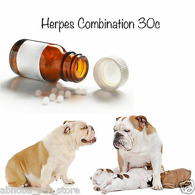 "10g Herpes Combination for dogs 30c Homeopathic ""Breeders Choice"" Puppy Whelping"