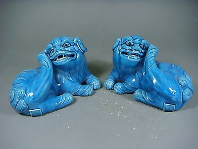 Beautiful Chinese blue  glaze porcelain a pair lions
