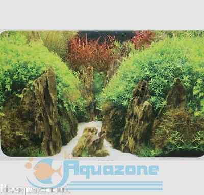 Hobby* Double Sided Background 50 cm HIGH* 2 3 4 5 6 ft  FOREST 9082/9085