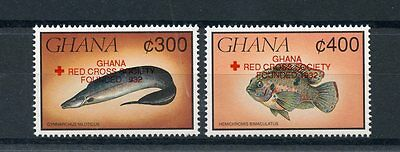 Ghana 1993 MNH Fishes Red Cross OVPT 2v Set Medical Health Fish Stamps