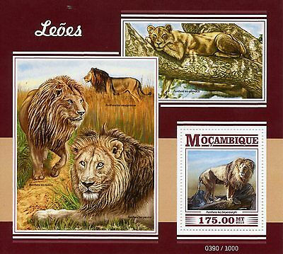 Mozambique 2015 MNH Lions 1v S/S Wild Animals Big Cats African Lion Stamps